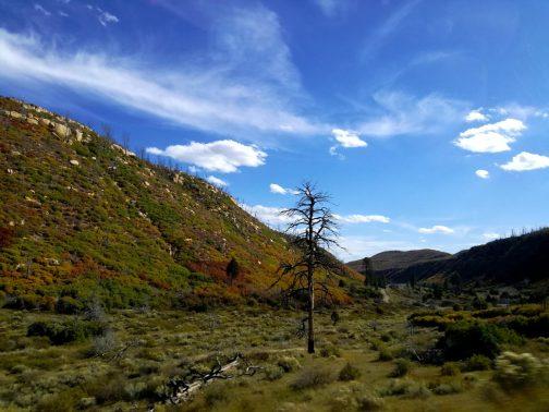 14 Mesa Verde National Park